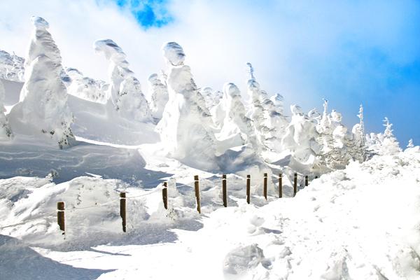 Zao Mountain , Japan-shutterstock_133310954