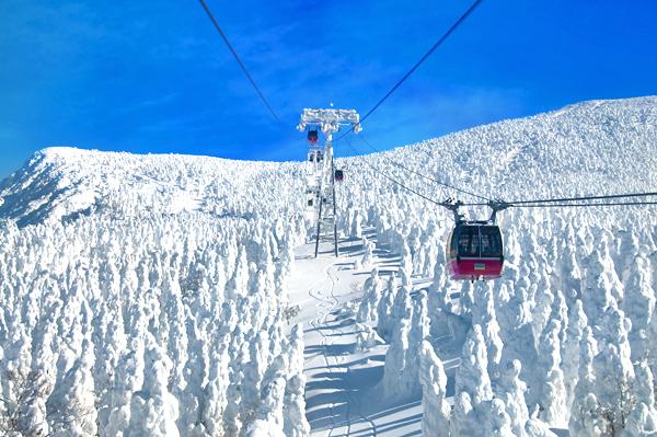 Zao Mountain, Yamagata, Japan-shutterstock_173423342
