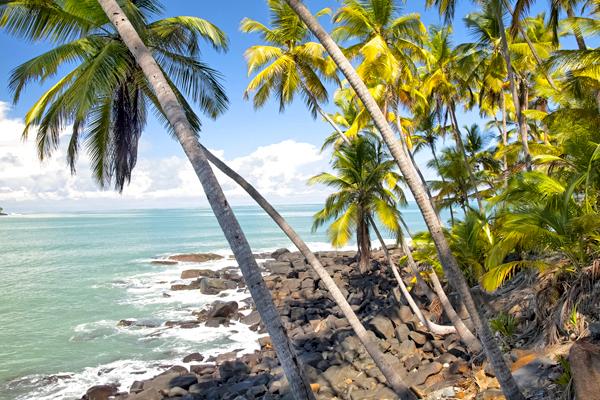 Les les du Salut - Guyane
