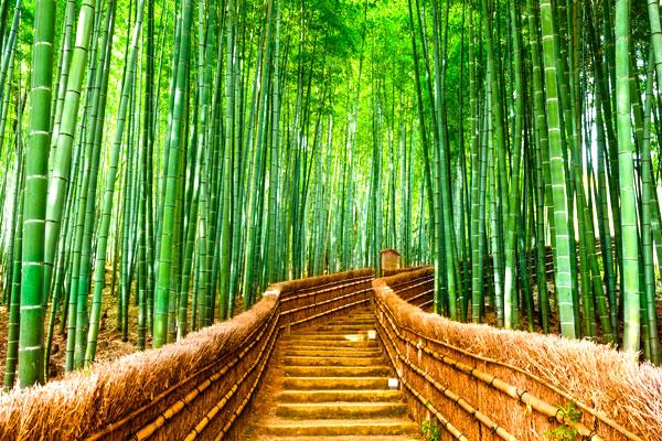 日本shutterstock_343886213