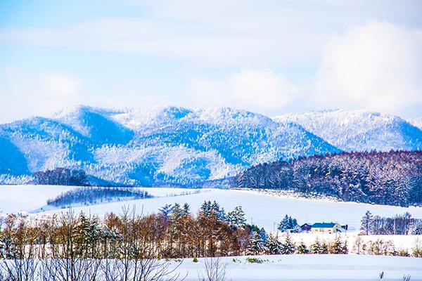 北海道-雪