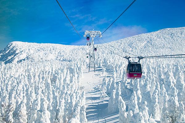 Zao-Mountain,-Yamagata,-Japan-shutterstock_173423342
