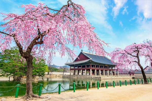 shutterstock_538076140_景福宮