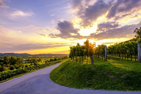 9-斯洛維尼亞維帕瓦山谷